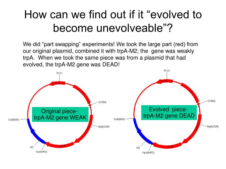 "How can we find out if it ""evolved to become unevolveable""?"