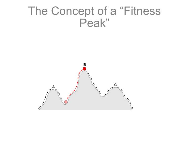 "The Concept of a ""Fitness Peak"""