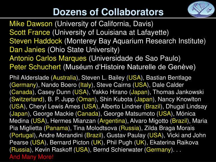 Dozens of Collaborators