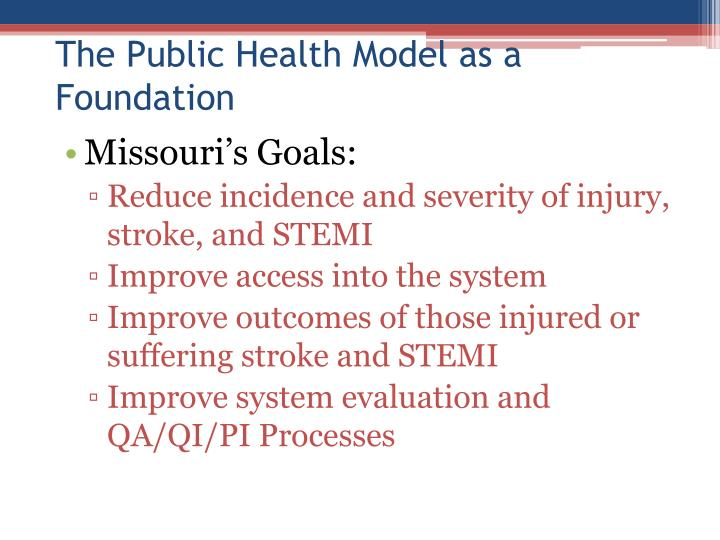 The public health model as a foundation