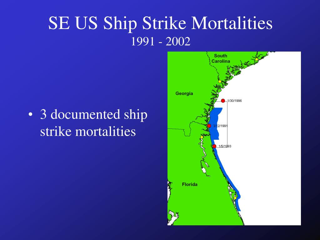 SE US Ship Strike Mortalities