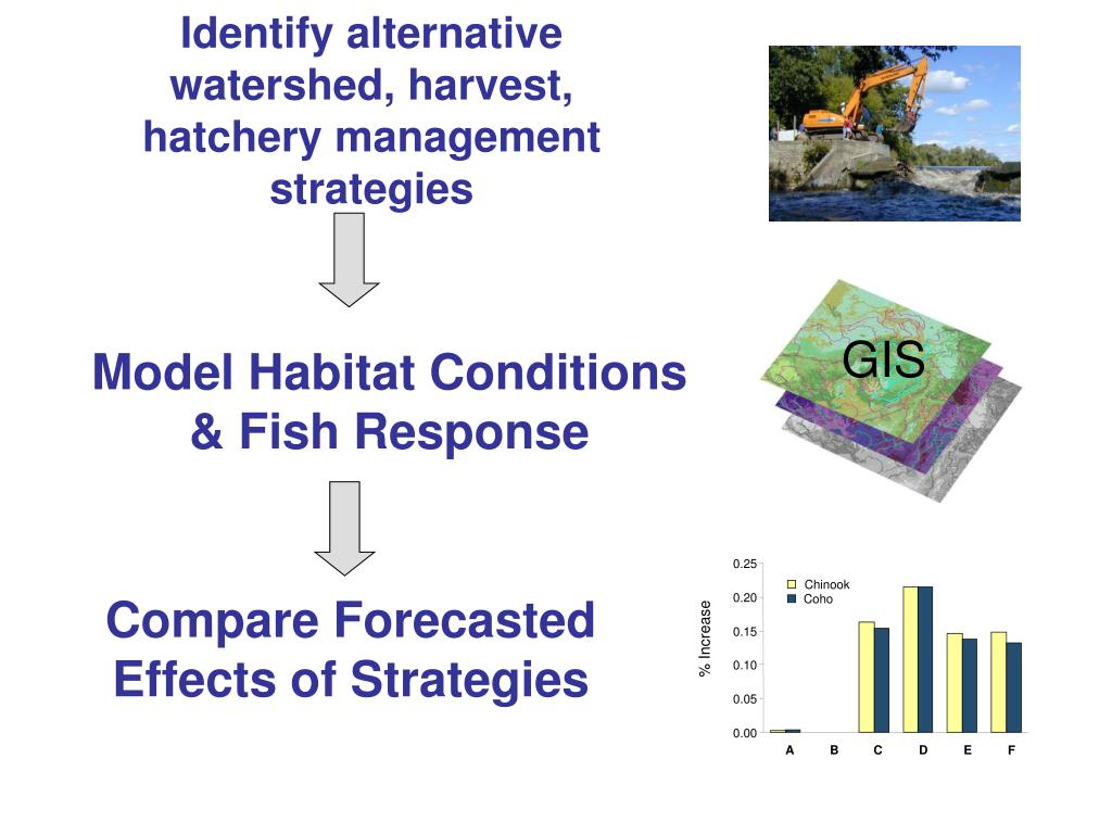Identify alternative watershed, harvest, hatchery management strategies