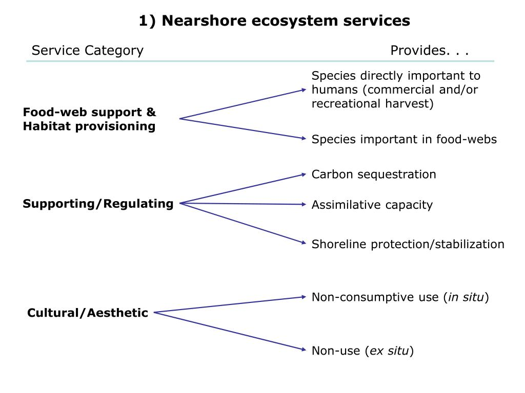 1) Nearshore ecosystem services