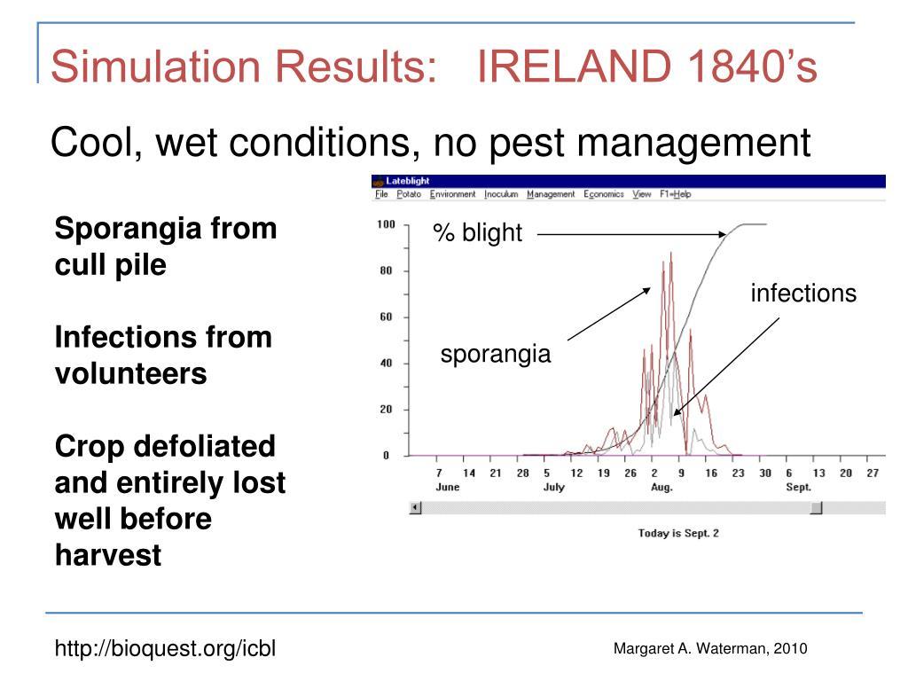 Simulation Results:   IRELAND 1840's