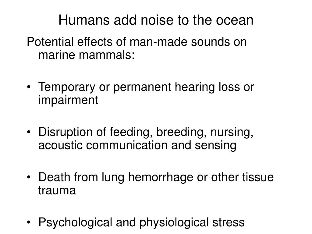 Humans add noise to the ocean