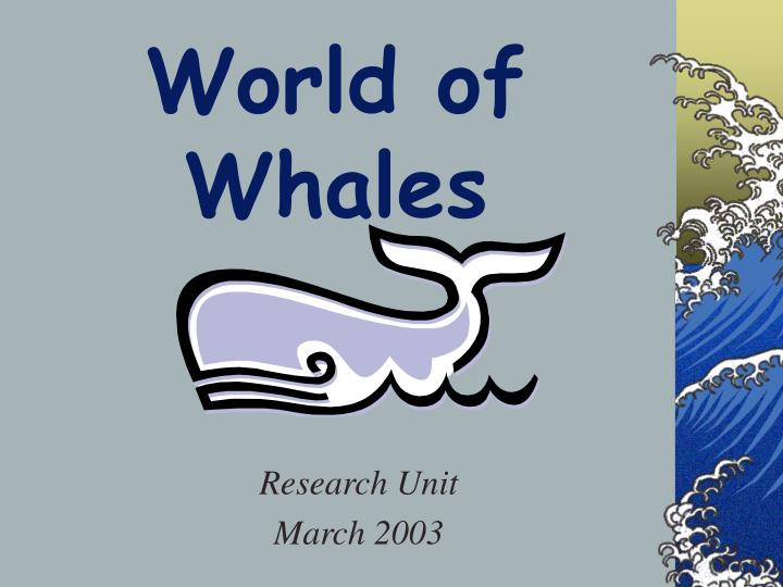World of whales l.jpg
