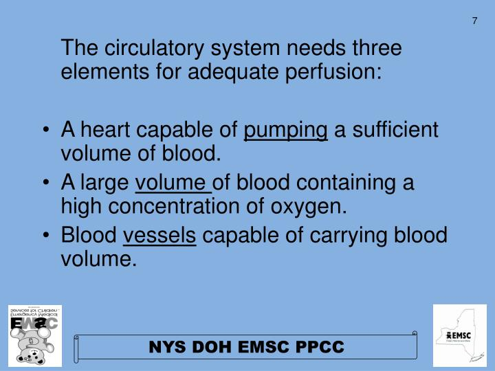The circulatory system needs three elements for adequate perfusion: