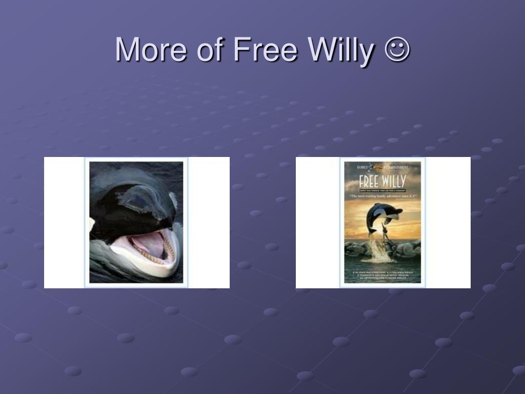 More of Free Willy
