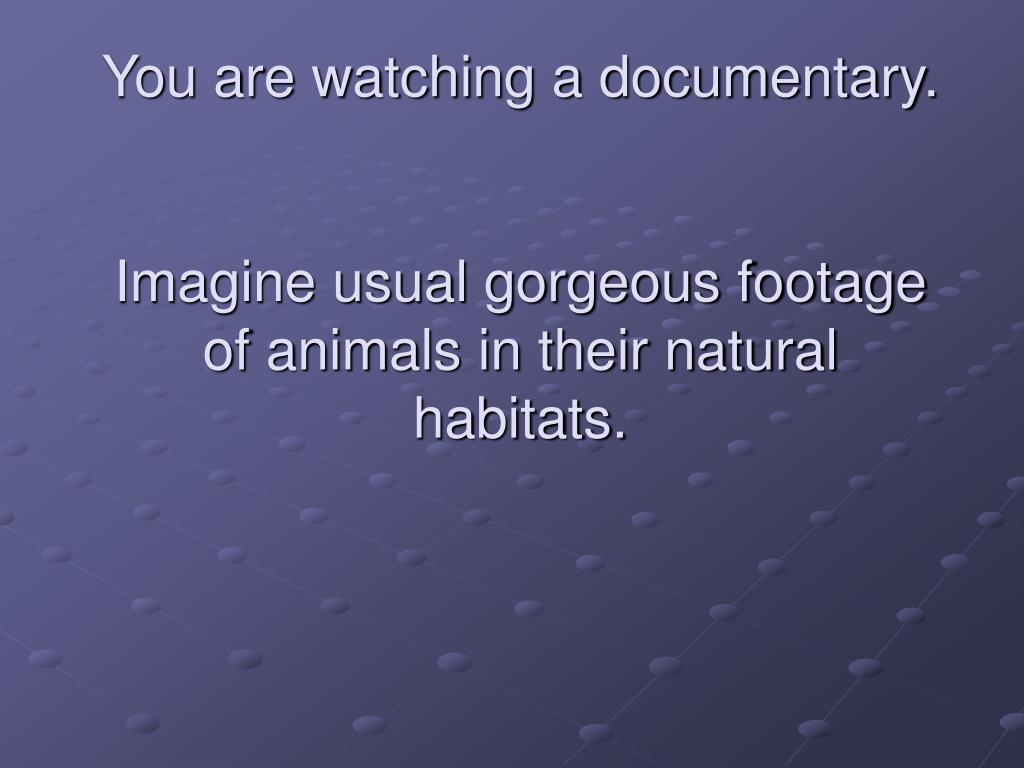 You are watching a documentary.