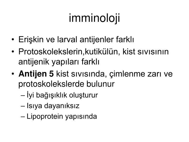 imminoloji