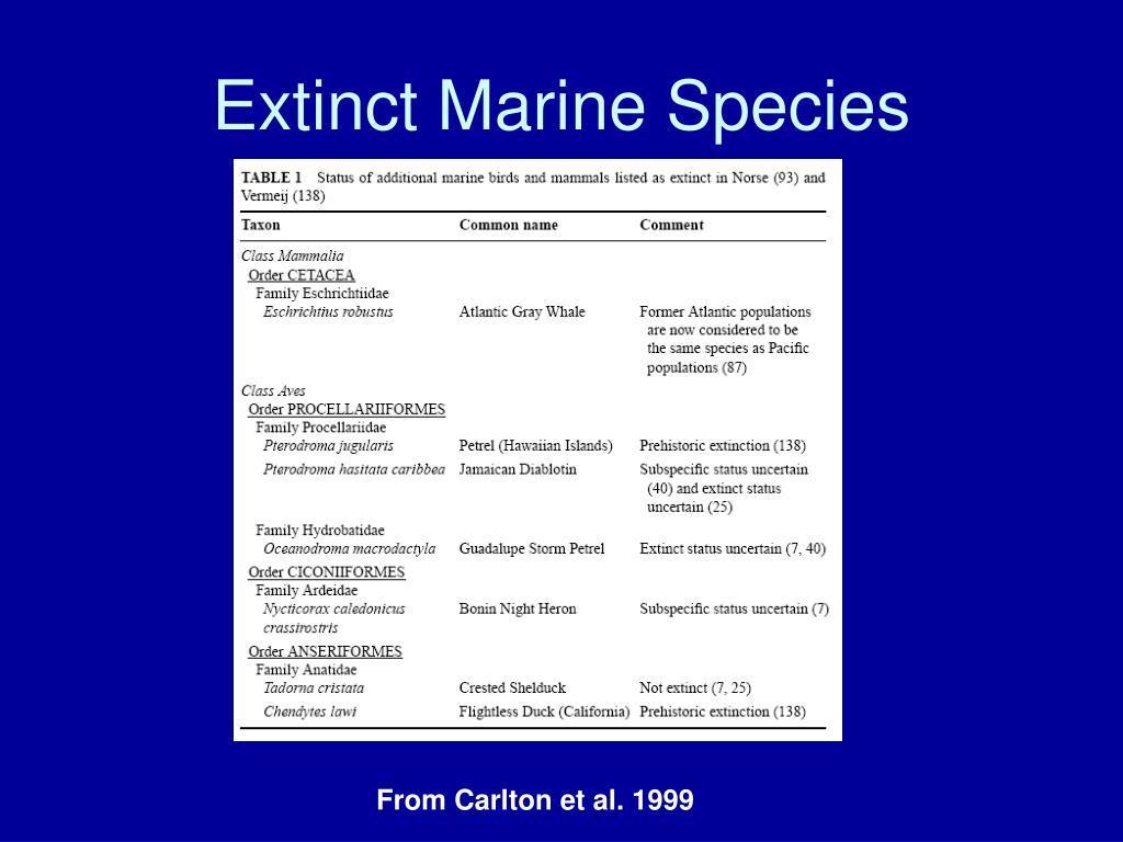 Extinct Marine Species