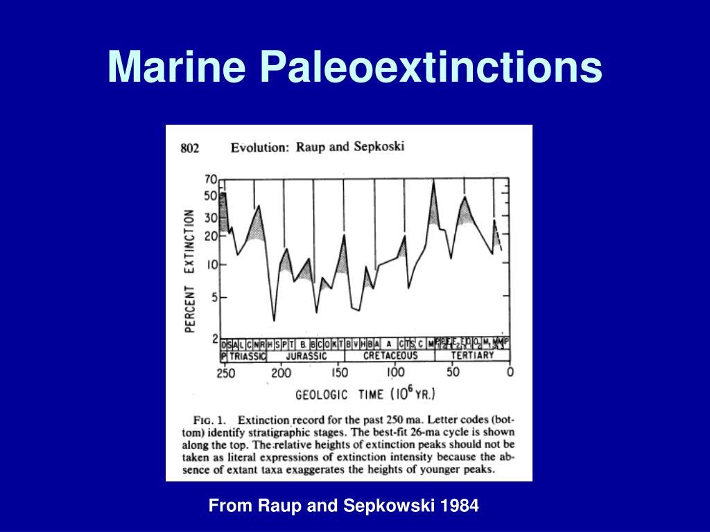 Marine Paleoextinctions