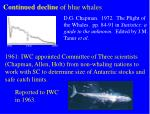 continued decline of blue whales
