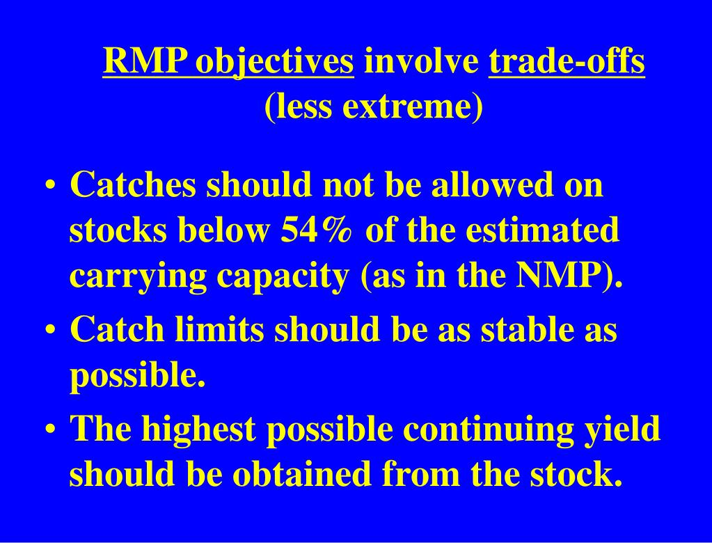 RMP objectives