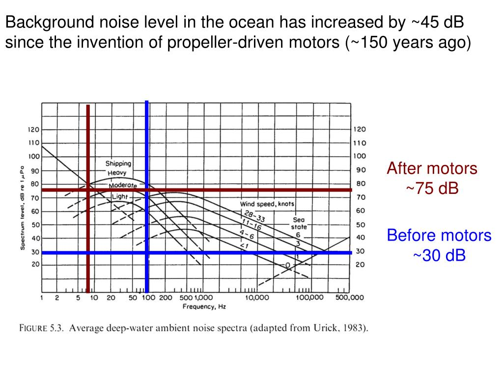 Background noise level in the ocean has increased by ~45 dB since the invention of propeller-driven motors (~150 years ago)