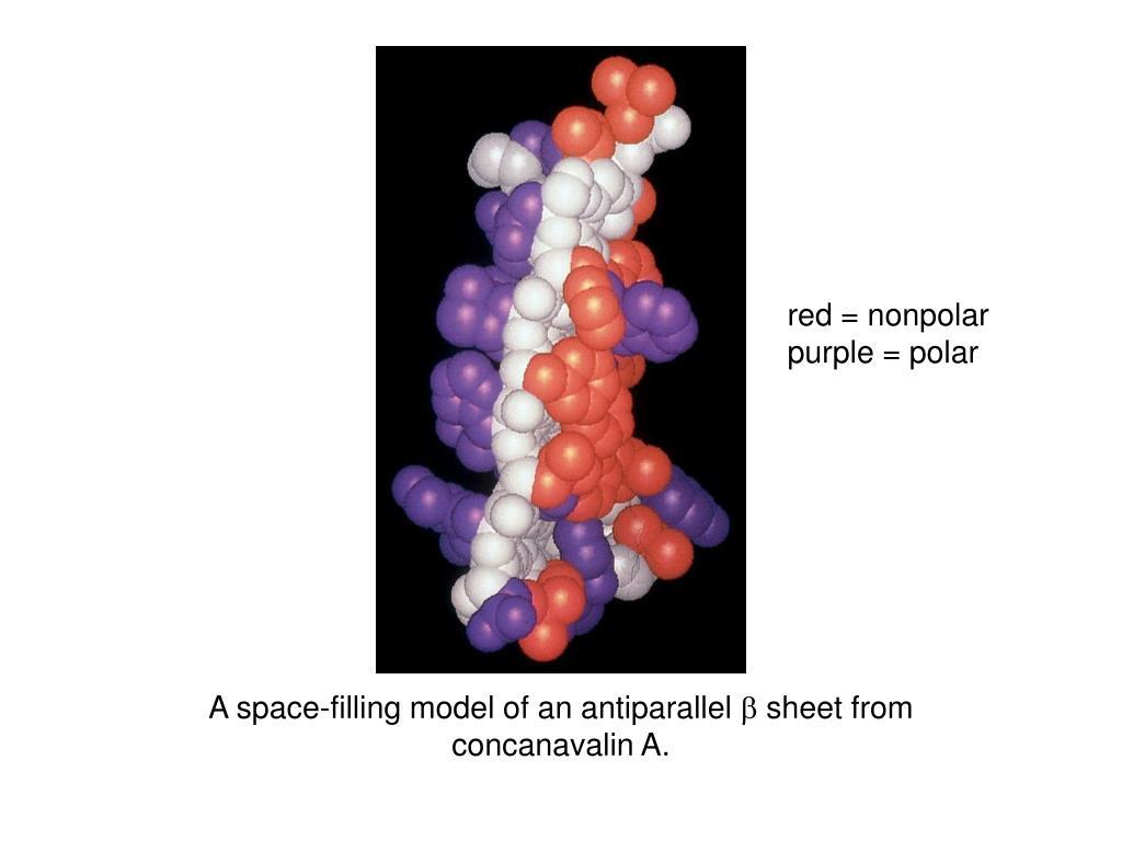 red = nonpolar