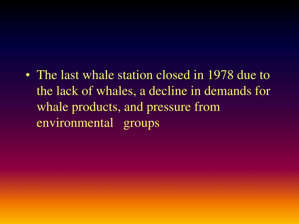 The last whale station closed in 1978 due to the lack of whales, a decline in demands for whale products, and pressure from environmental   groups
