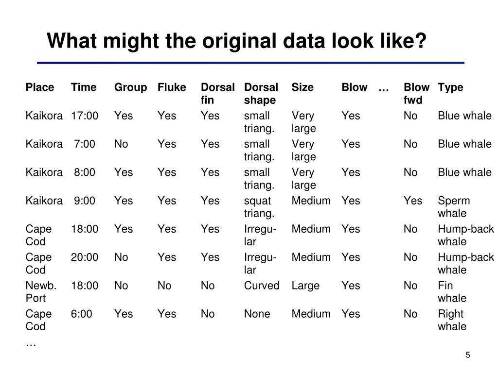 What might the original data look like?