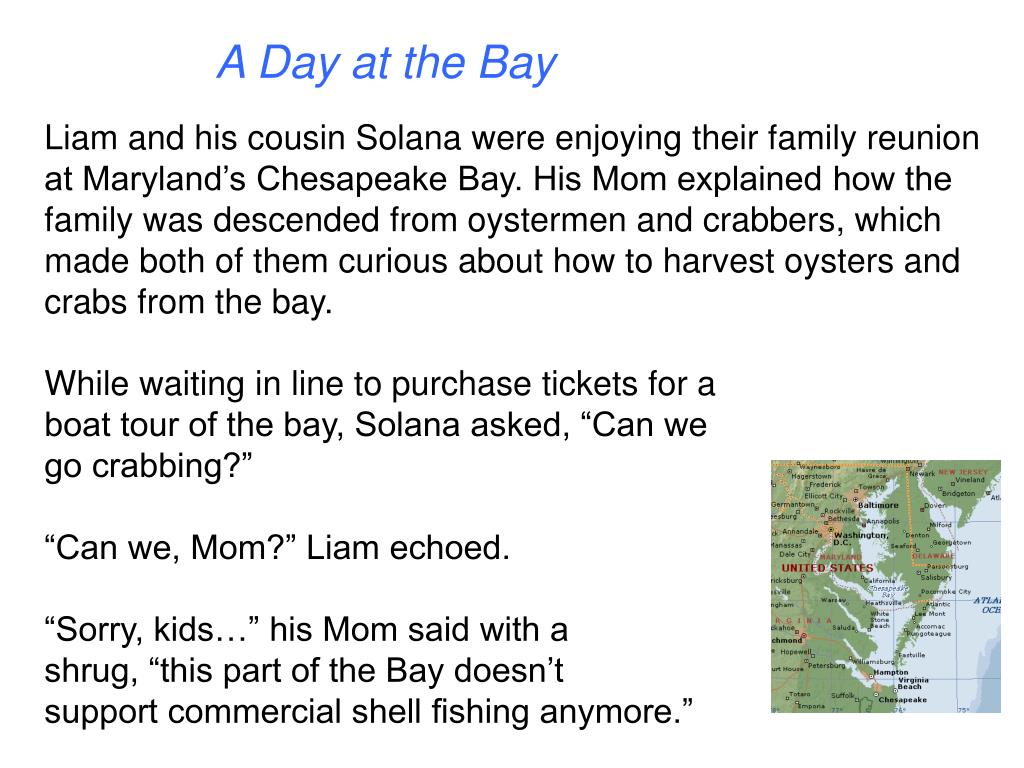 A Day at the Bay