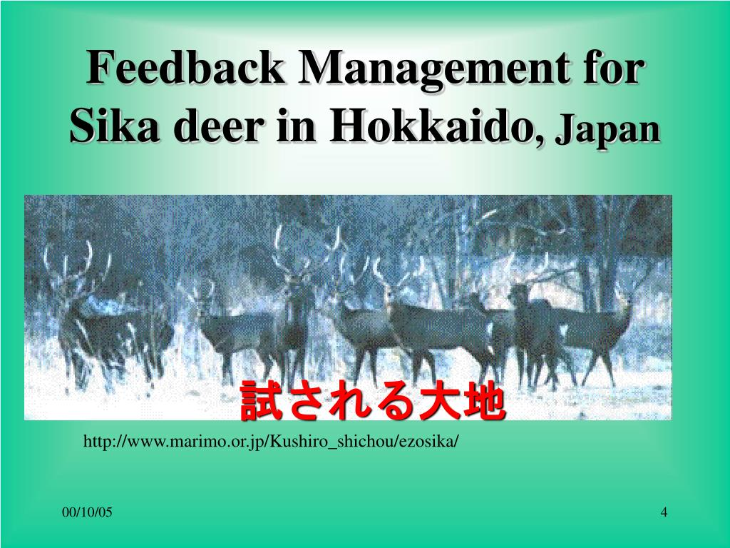 Feedback Management for Sika deer in Hokkaido