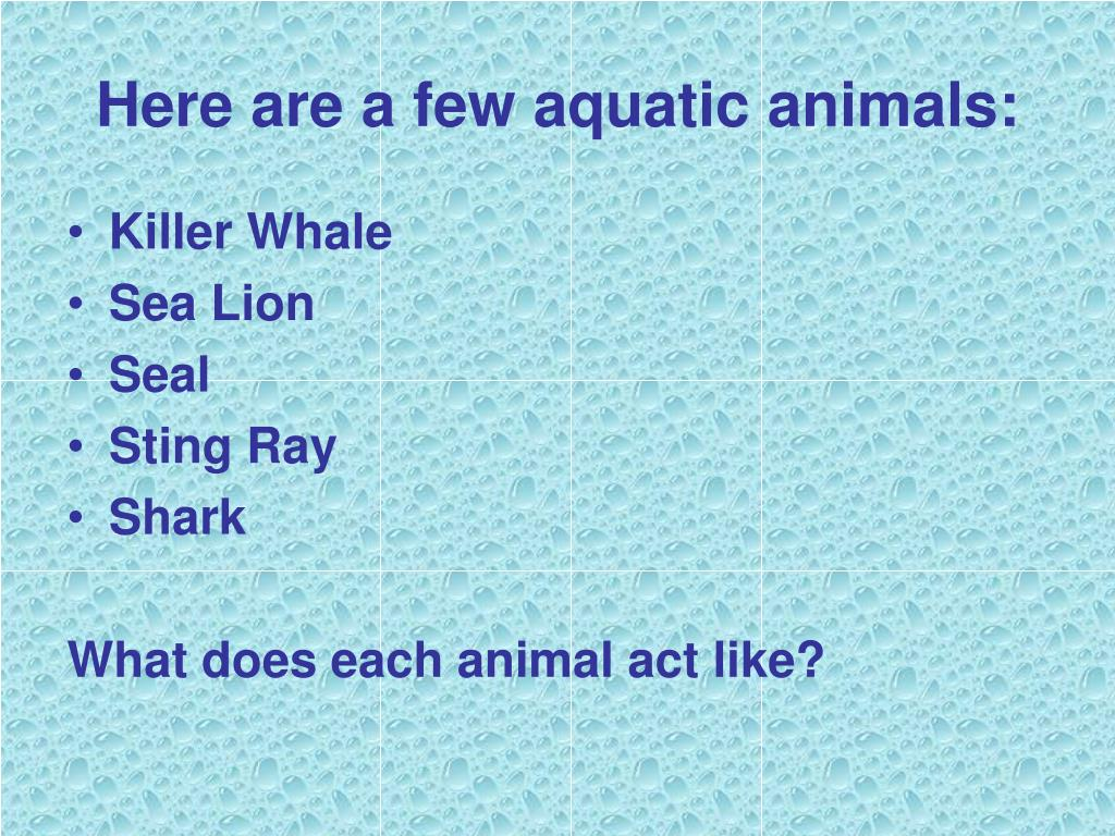 Here are a few aquatic animals: