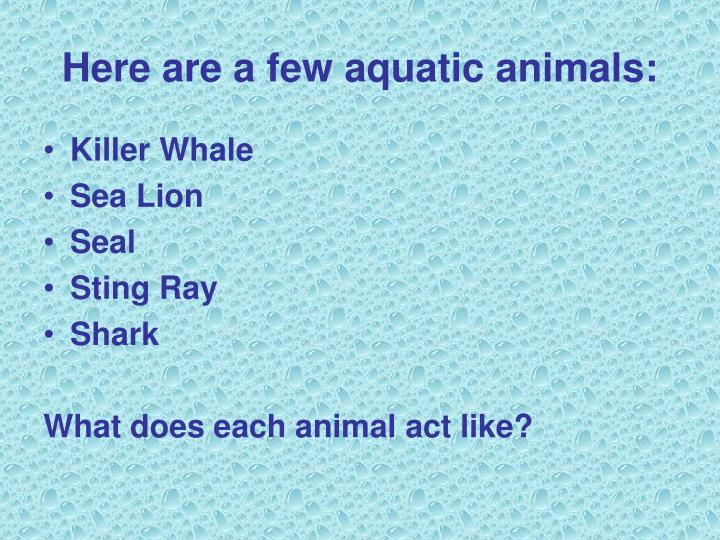 Here are a few aquatic animals