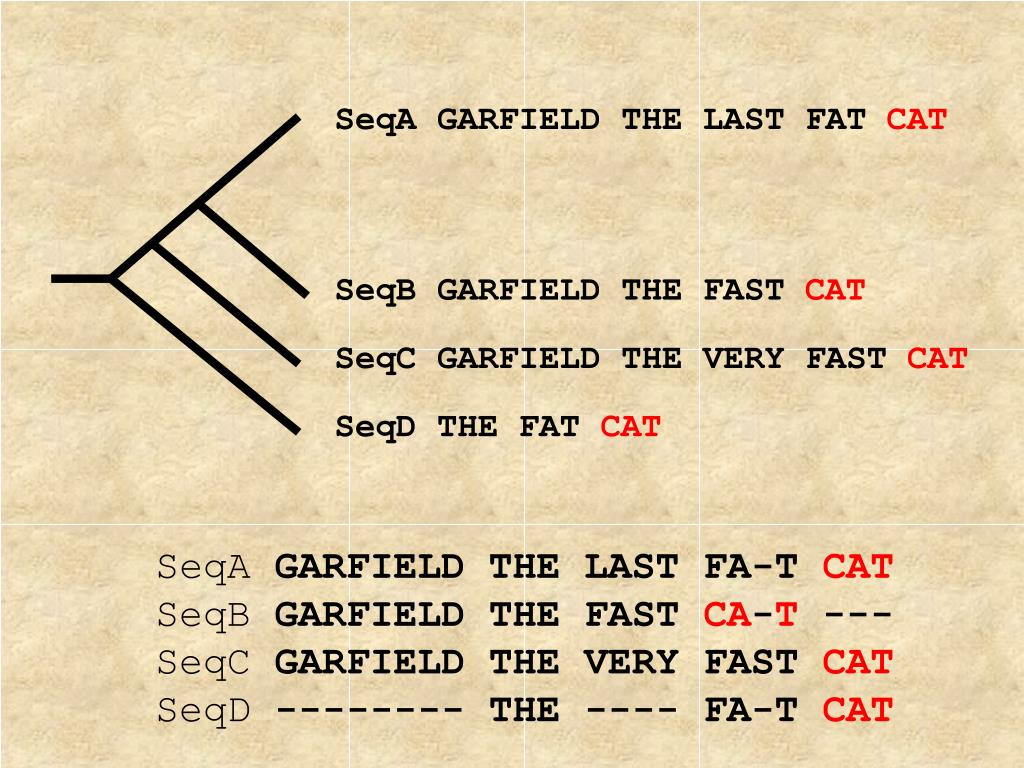 SeqA GARFIELD THE LAST FAT