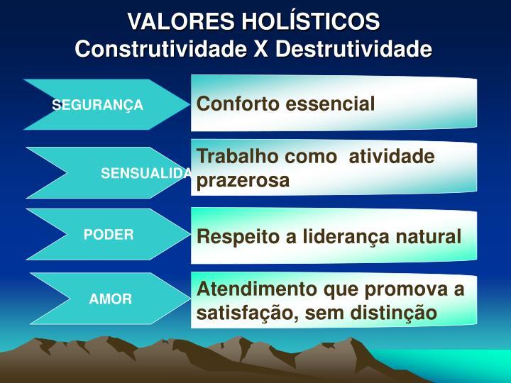 VALORES HOLÍSTICOS