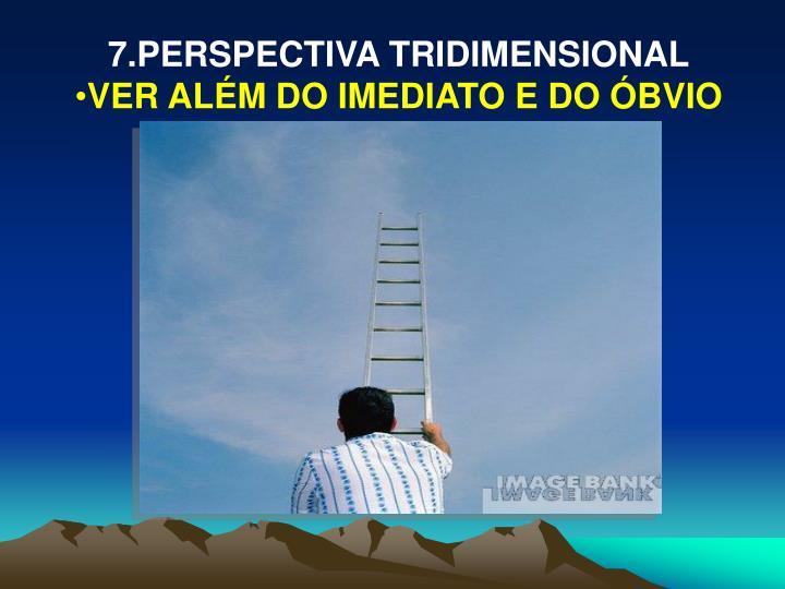 7.PERSPECTIVA TRIDIMENSIONAL