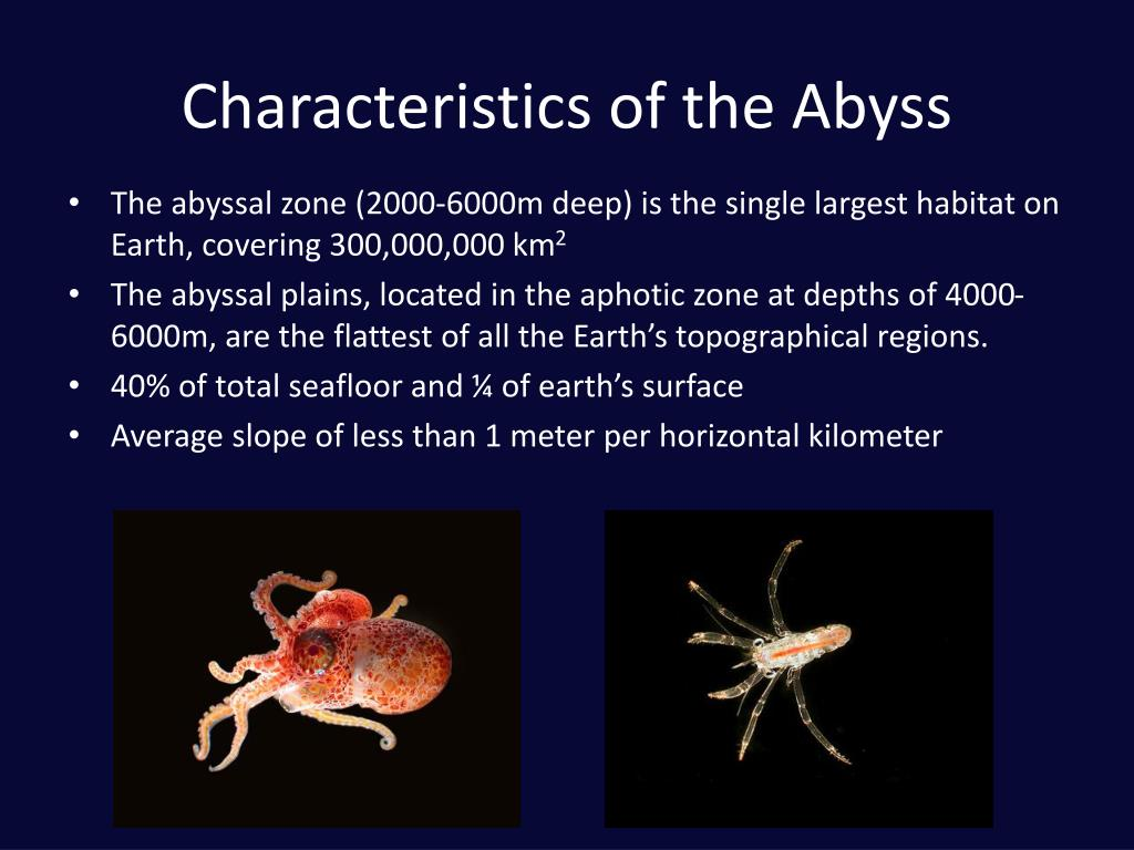 Characteristics of the Abyss