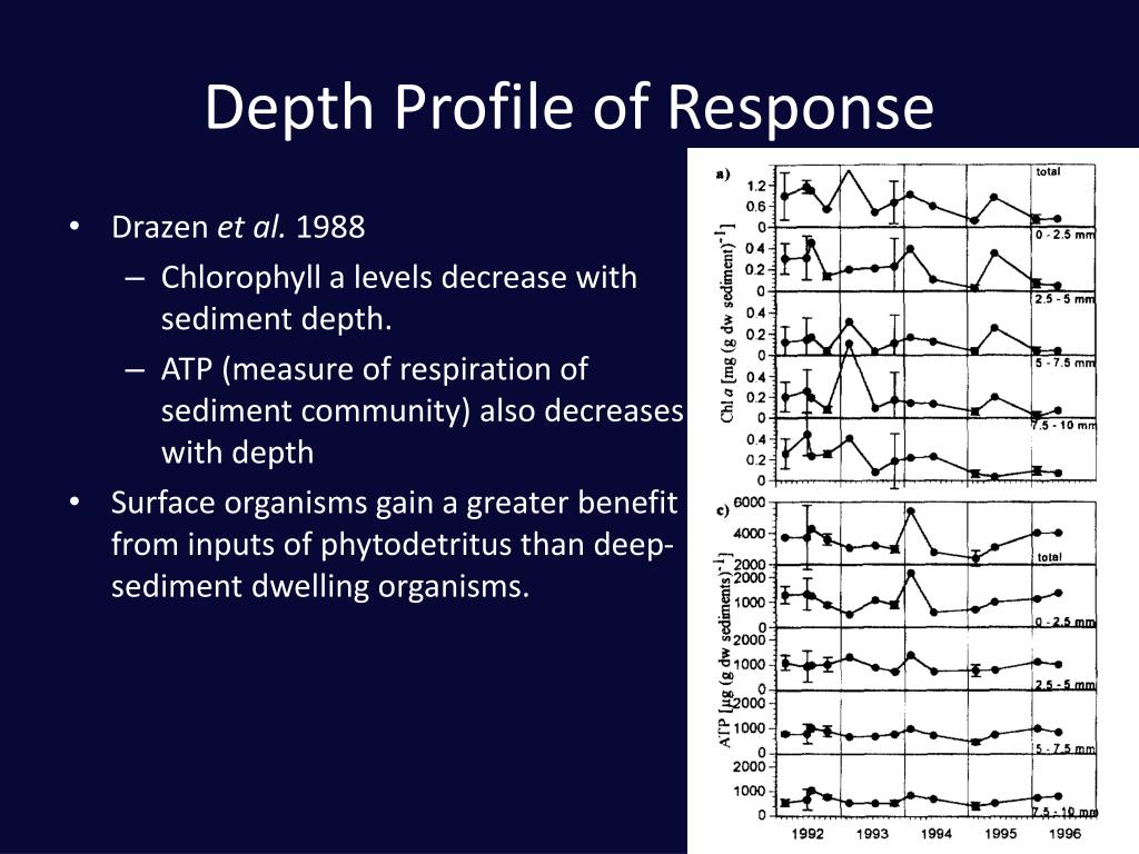 Depth Profile of Response