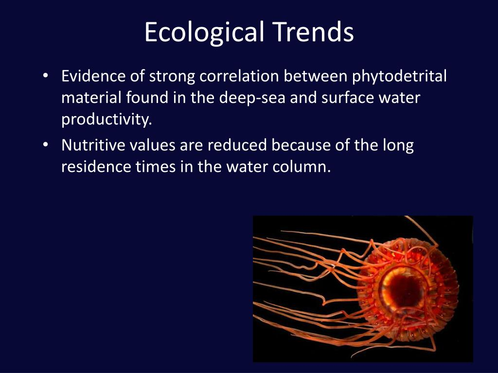 Ecological Trends