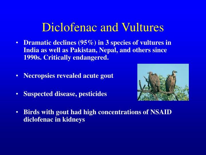 Diclofenac and Vultures