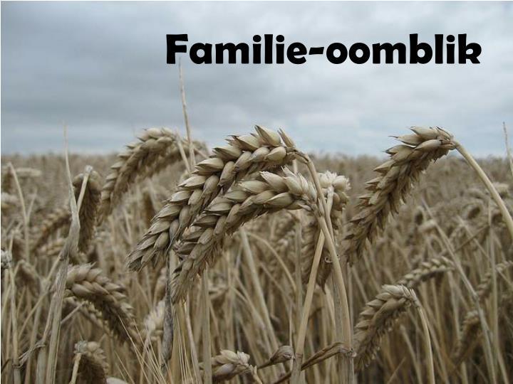 Familie-oomblik