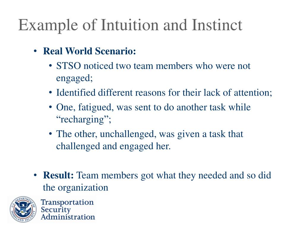 Example of Intuition and Instinct