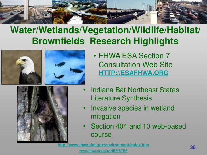 Water/Wetlands/Vegetation/Wildlife/Habitat/