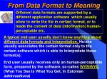 from data format to meaning