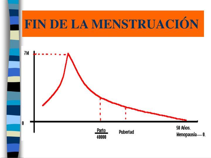 FIN DE LA MENSTRUACIÓN