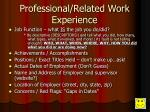 professional related work experience