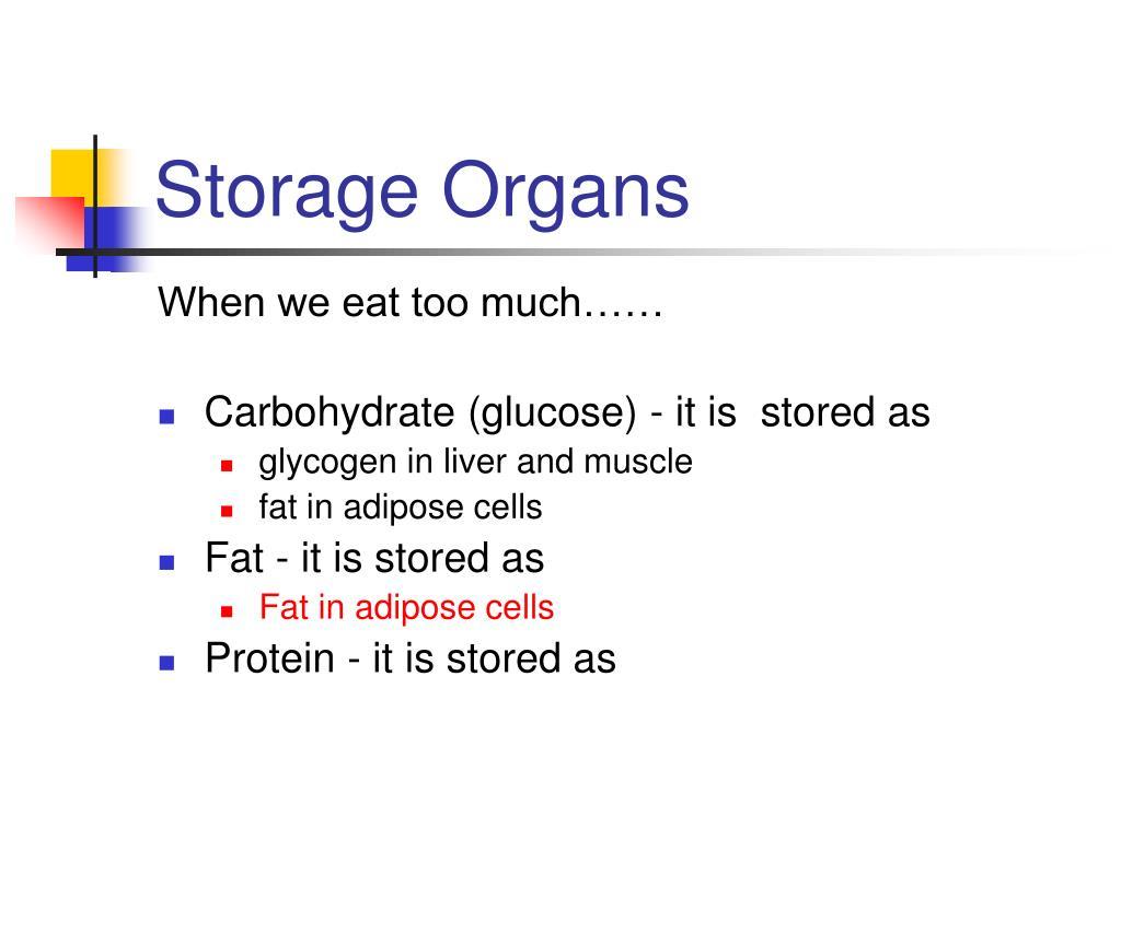 Storage Organs