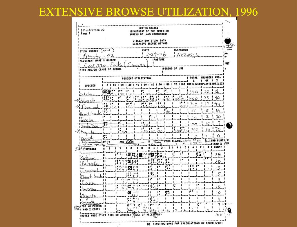 EXTENSIVE BROWSE UTILIZATION, 1996