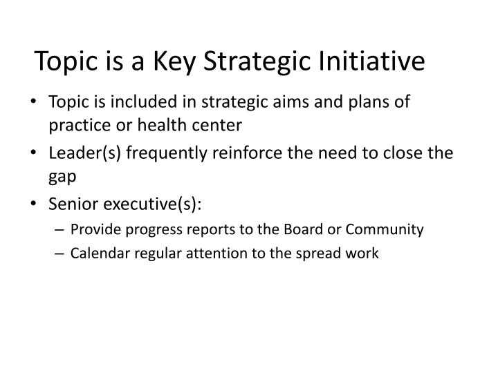 Topic is a Key Strategic Initiative