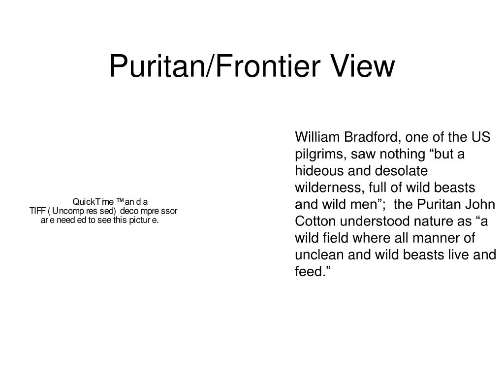 "William Bradford, one of the US pilgrims, saw nothing ""but a hideous and desolate wilderness, full of wild beasts and wild men"";  the Puritan John Cotton understood nature as ""a wild field where all manner of unclean and wild beasts live and feed."""