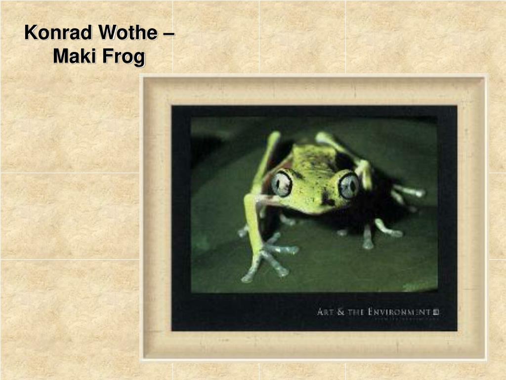 Konrad Wothe –Maki Frog