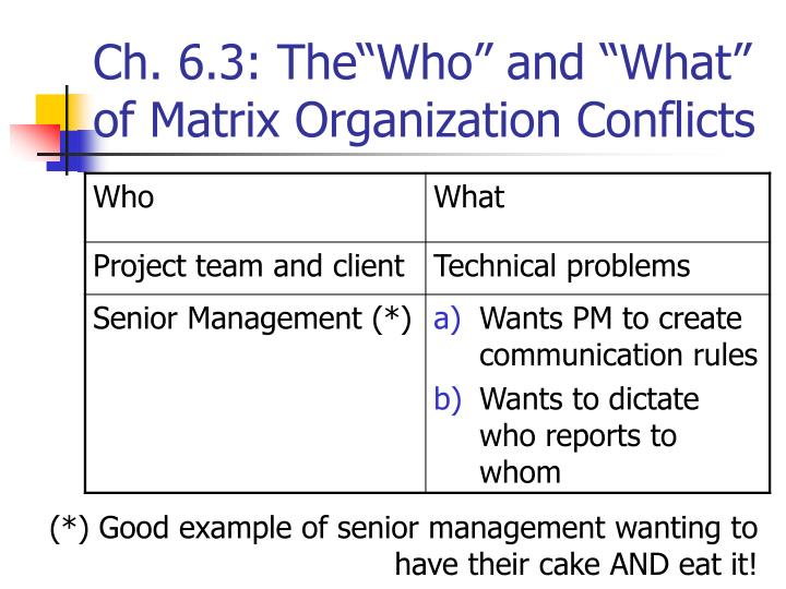 "Ch. 6.3: The""Who"" and ""What"" of Matrix Organization Conflicts"