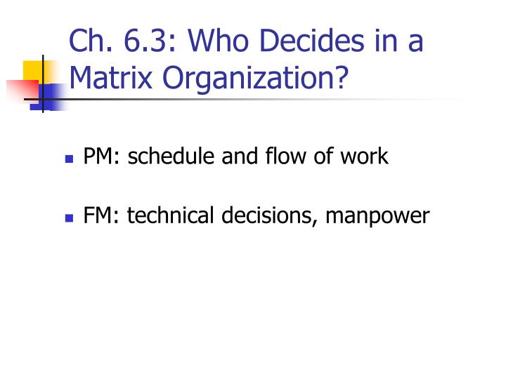 Ch. 6.3: Who Decides in a Matrix Organization?