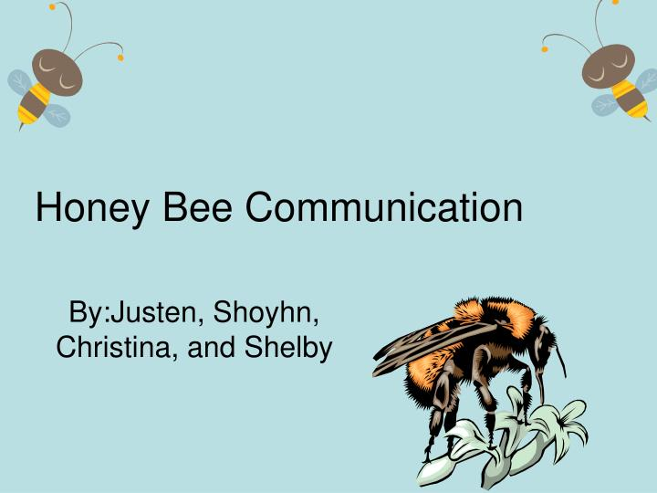 Honey Bee Communication