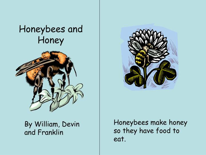 Honeybees and Honey