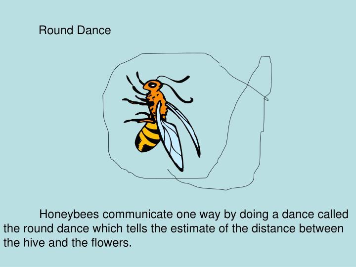 Round Dance