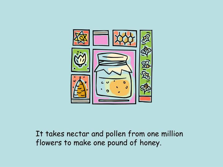 It takes nectar and pollen from one million flowers to make one pound of honey.